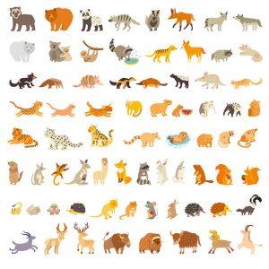 Mammals of the world, extra big animals set free vector illustration - 0206201602