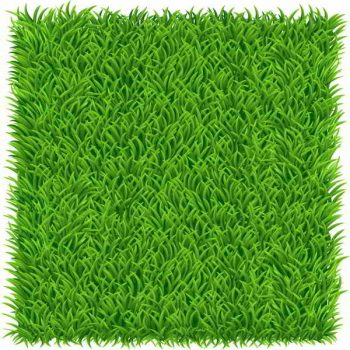 green grass vector background free - 1606201603