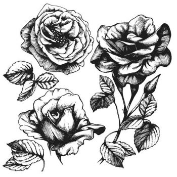 Set of highly detailed hand-drawn roses - 2207201601