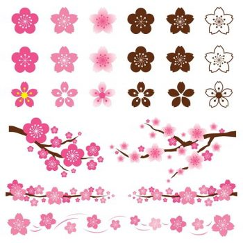 Cherry Blossoms and Sakura flowers Ornament - 2407201606