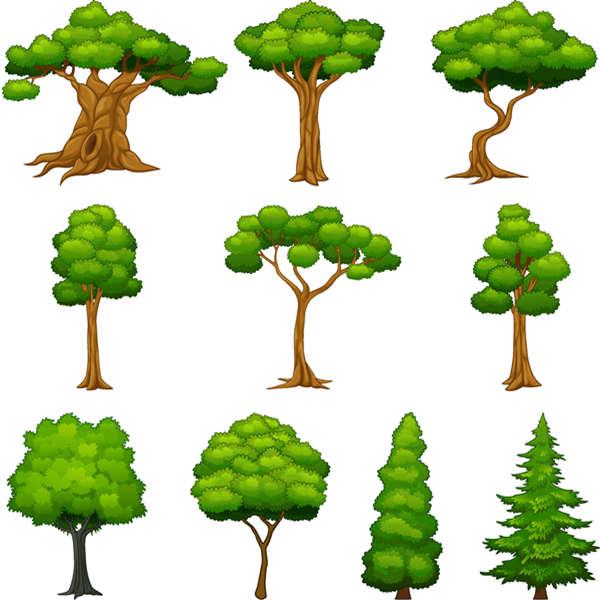 Diversity trees vector set - 2807201601